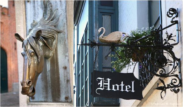 Bruges - Cheval et cygne
