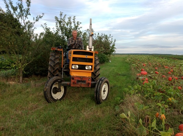 Tracteur - Mon Potager