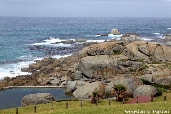 Une Balade Cape Town Le Cap Afrique Du Sud