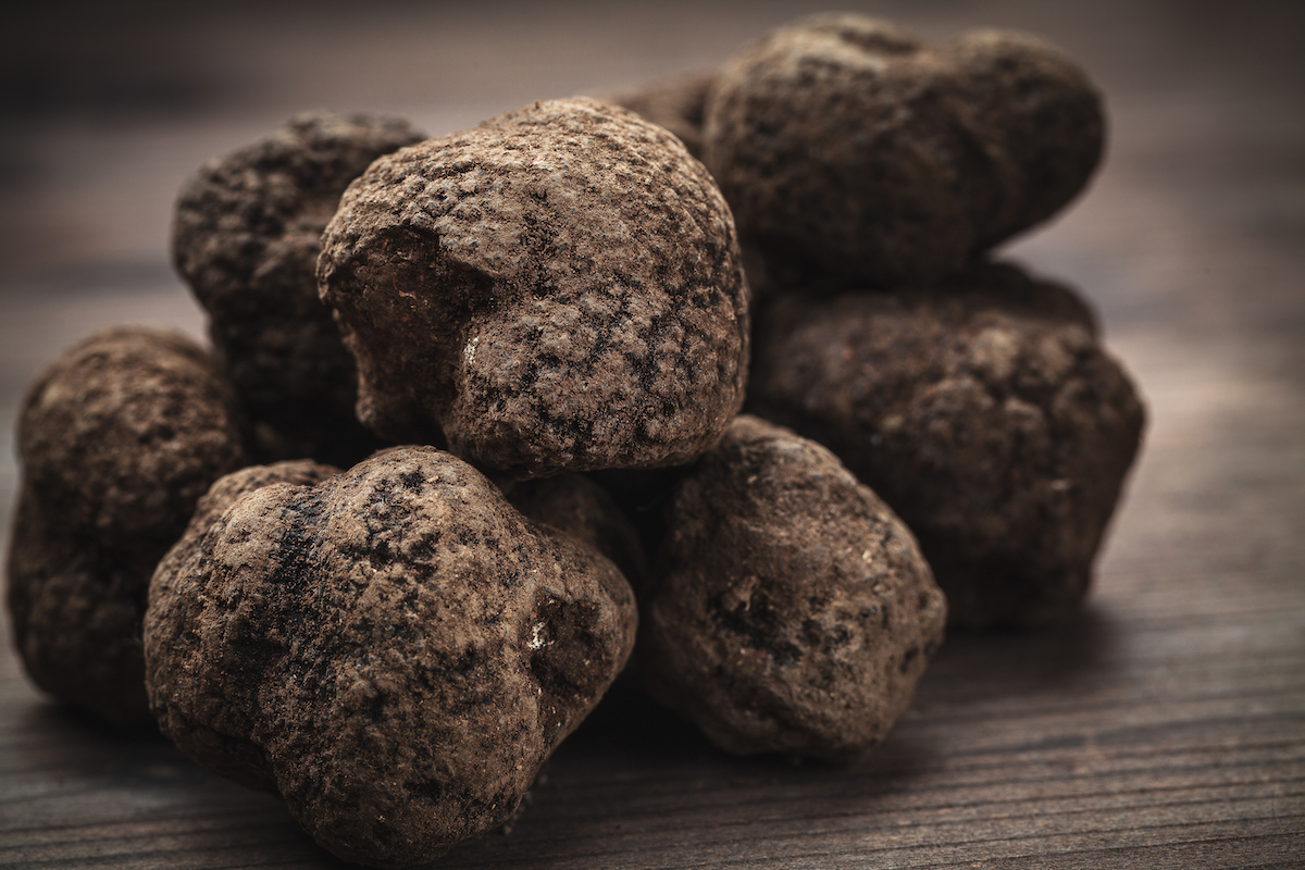 Truffes noires © Ruggiero Scardigno shutterstock