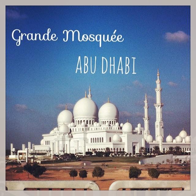 Une des 10 plus grandes mosquées du monde - très belle et très impressionnante