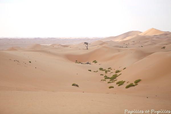 Desert de Razeen