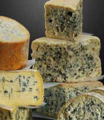 Les fromages à pâte persillée