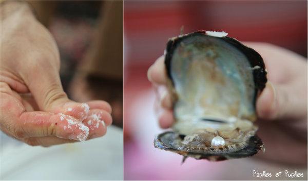 On nettoie la perle dans du sel, on la remet éventuellement dans l'huître pour la photo