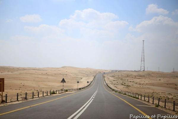 Sur la route du desert