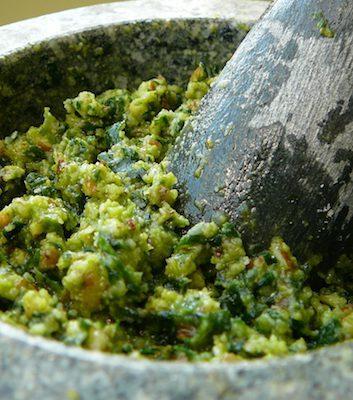 Pesto à l'ail des ours ©kstenqnen CC BY-NC-SA 2.0