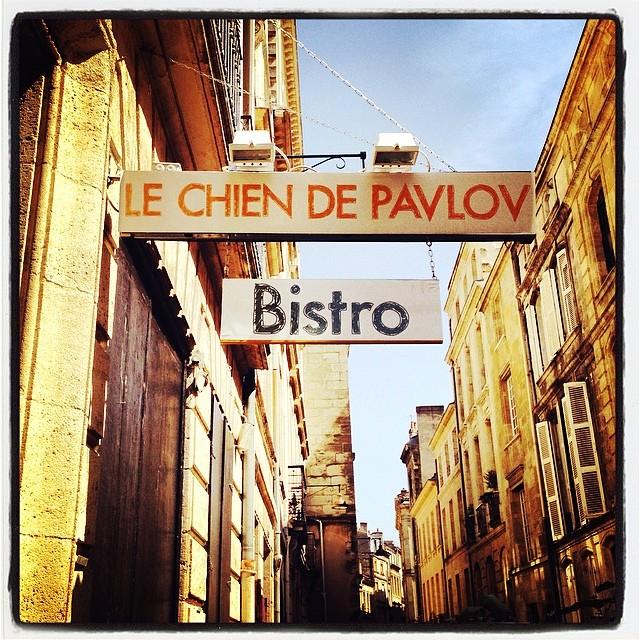 Le chien de Pavlov - Bordeaux