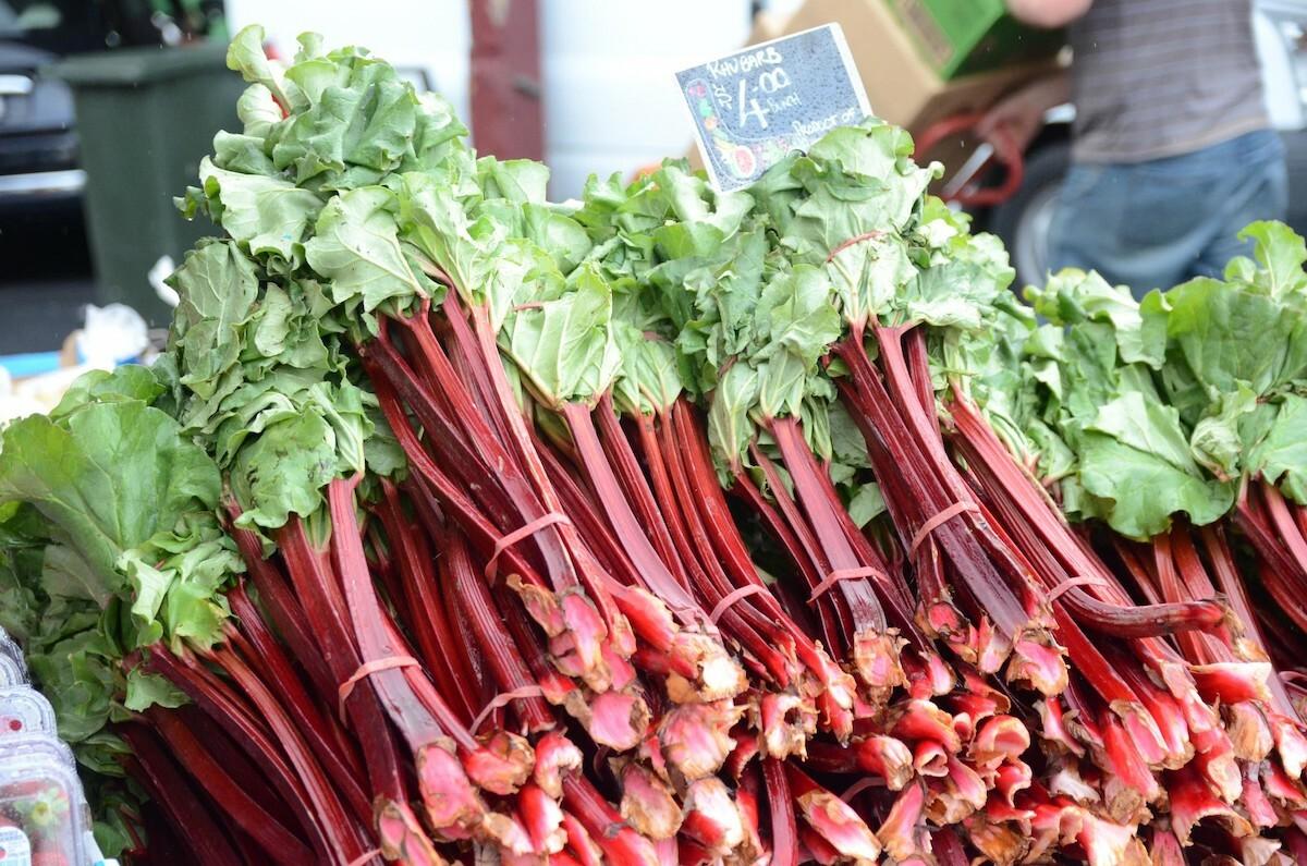 Bottes de rhubarbe ©avlxyz CC BY-NC-SA 2.0