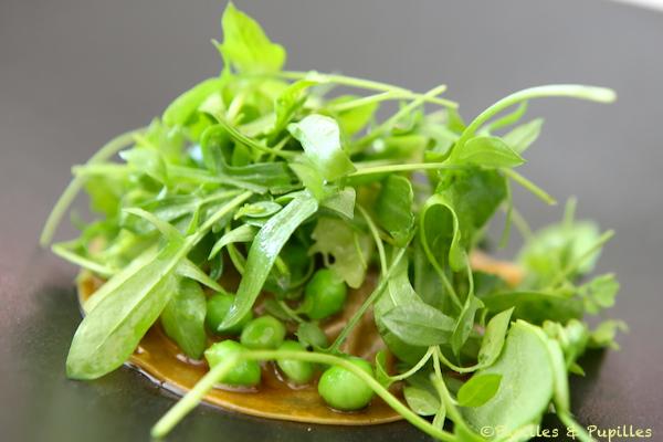 Salade Max Maurey => Celtuce & Jambon Ibaiona et jeunes carottes