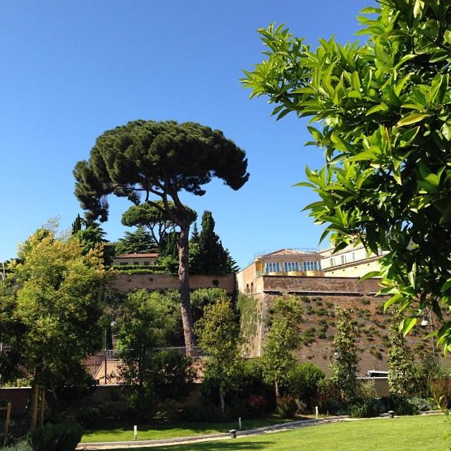 Bellisima Roma