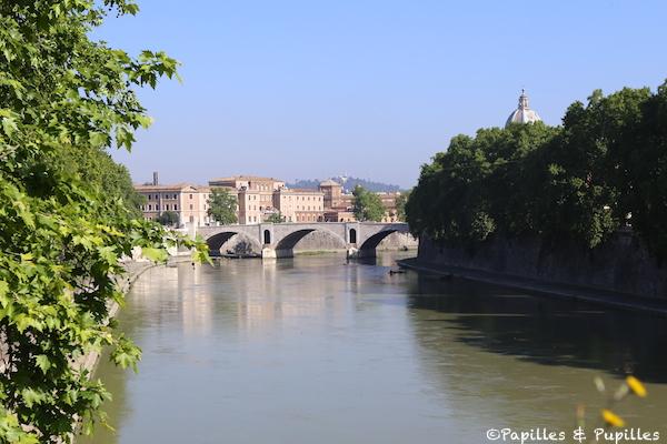 Le Tibre - Rome