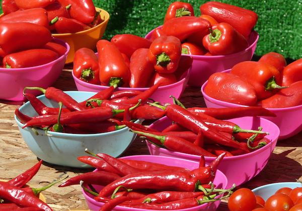 Tomates et poivrons ©Judy van der Velden CC BY-NC-ND 2.0