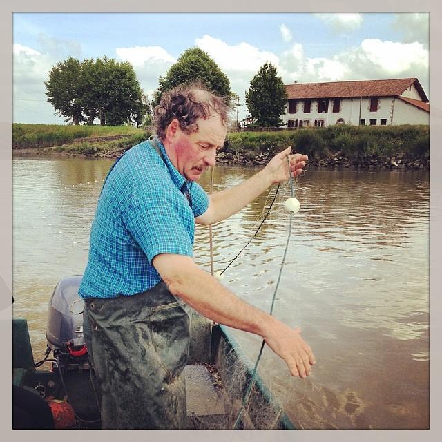 À Peyrehorade dans les Landes on pêche le saumon de l'Adour au trémail