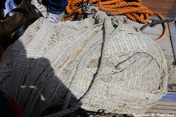 Filets pour la pêche à la crevette