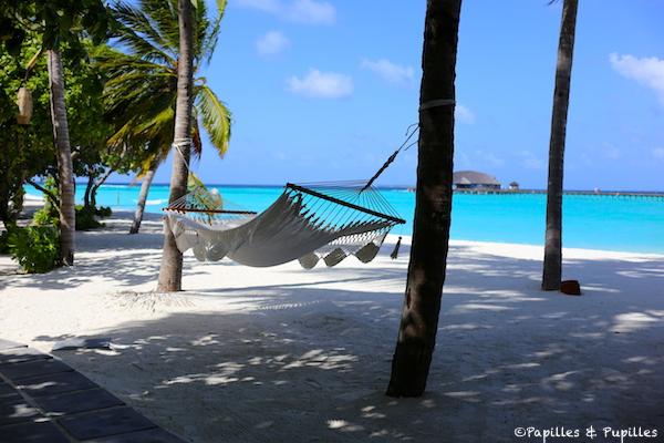 L'océan indien - The Sun Siyam Iru Fushi Maldives