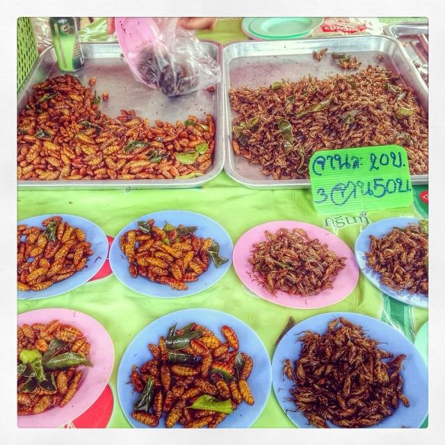 Larves et insectes grillés - marché - Thaïlande