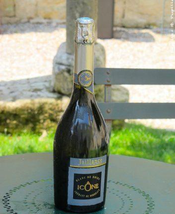 Crémant de Bordeaux Blanc de Noirs Icône - Jaillance
