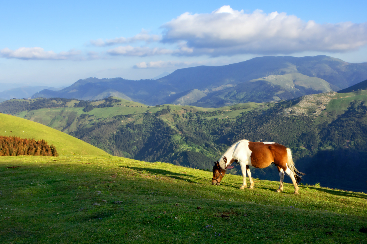 Pays Basque ©mimadeo Shutterstock