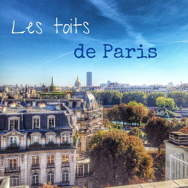 Terrasse avec vue - La Maison Blanche - Avenue Montaigne - Paris