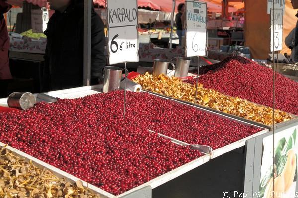 les baies rouges : airelles, canneberges