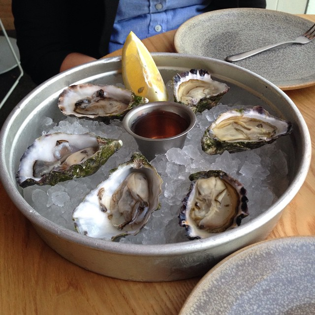 Amazing Sydney Rock Oysters and Pacific Oysters