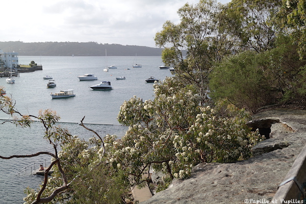 Parslay Bay - Sydney