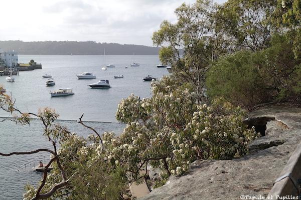 Parslay Bay - Sydney
