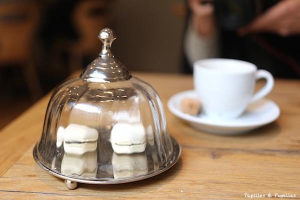 Café et macarons - GaroPapilles