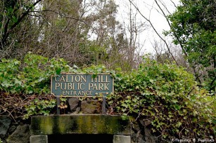 Calton Hill, Public Park
