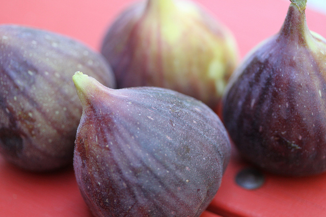Figues (c) Keith Mc Duffy CC BY 2.0