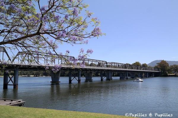 Jacaranda et Shoalhaven river - Nowra