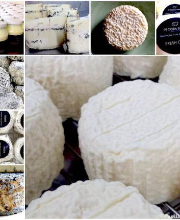 Les fromages de Pecora Dairy