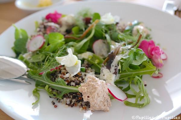 Salade quinoa radis