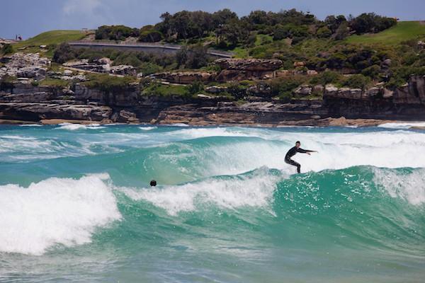 Surfeur Sydney ©Archiwiz shutterstock