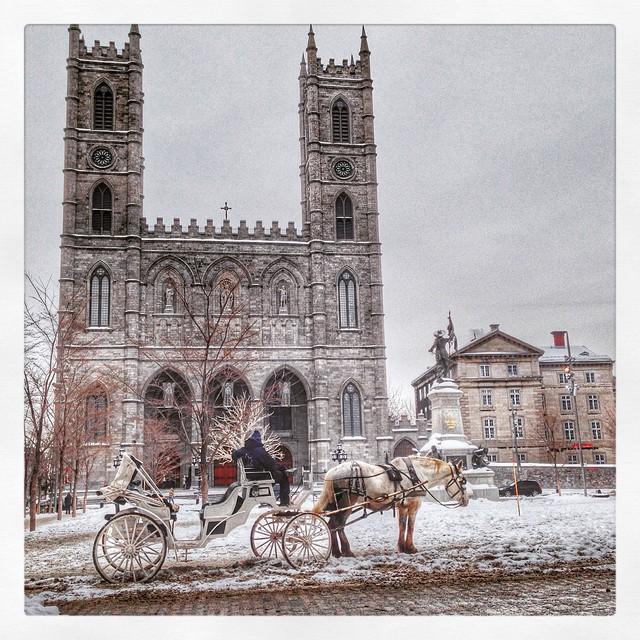 Basilique Notre Dame - Montréal
