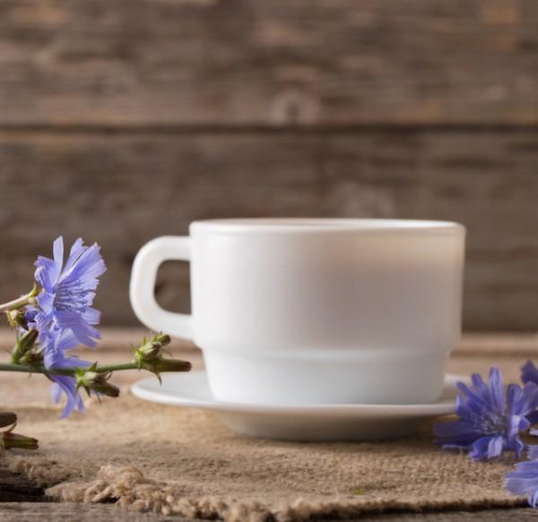 Tasse de chicorée ©Maya Kruchankova shutterstock
