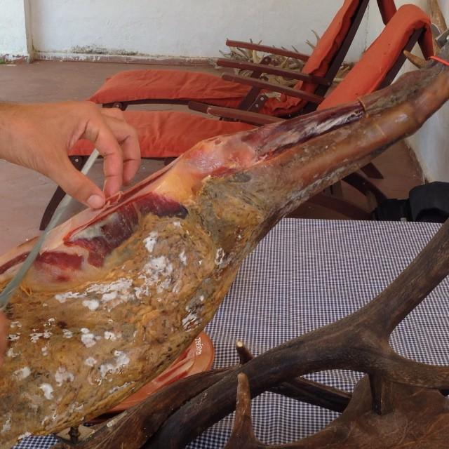 La découpe du jambon pur iberico Bellota par un cortador