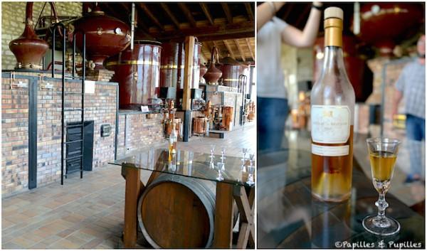 Distillerie - Château de Beaulon
