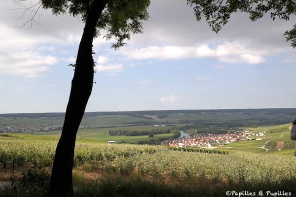 Vue sur le village de Cumières depuis Hautvillers - Champagne