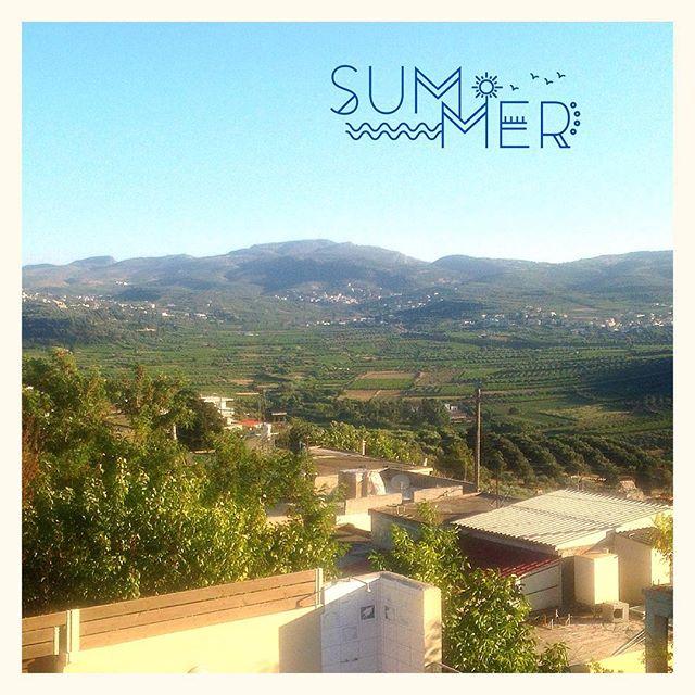 Des vignes et des oliviers #Crete