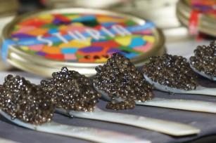 Caviar Sturia