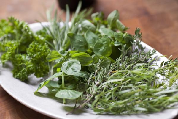 Herbes aromatiques (c) Multiart shutterstock