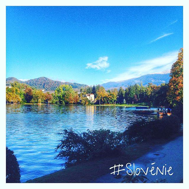 Bled - Le lac