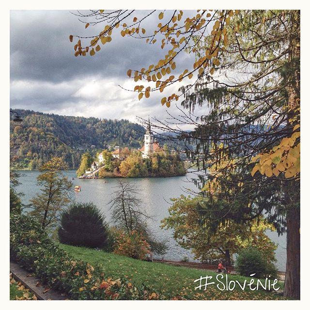 Ile de Bled - Lac Bled - Slovénie