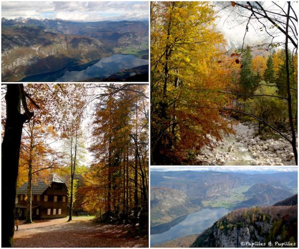Les couleurs d'automne en Slovénie