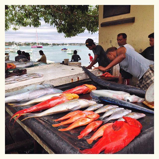 Marché aux poissons - Grand Baie
