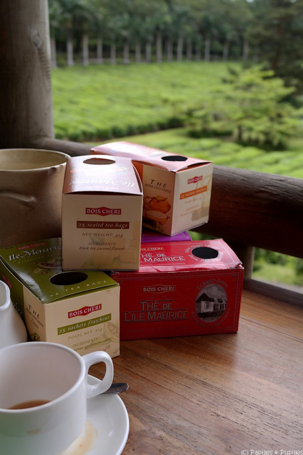 Dégustation de thés