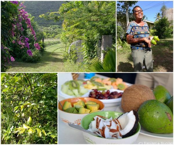 Balade à Saint Kitts et Nevis