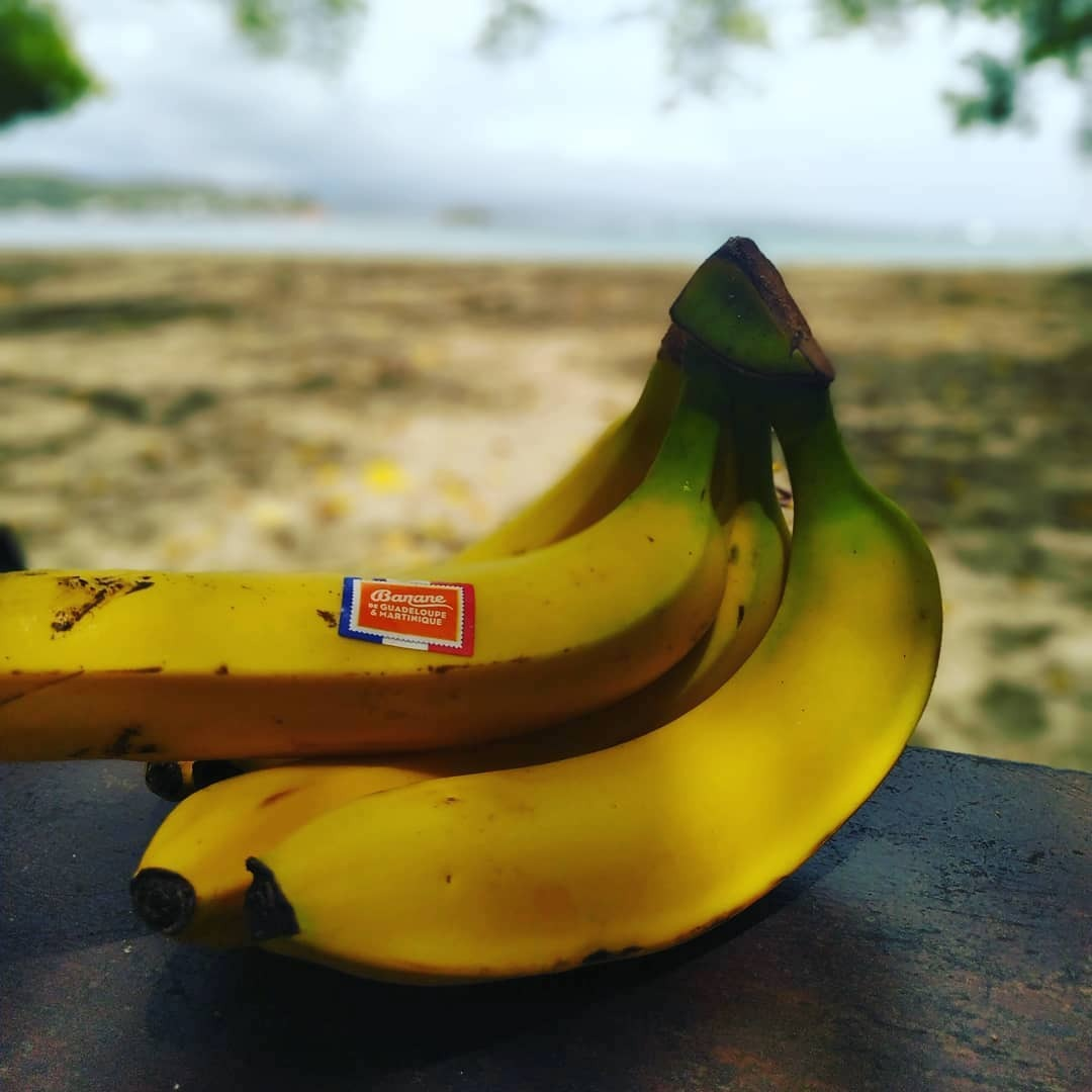 Banane de Martinique