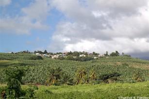 Habitation Belfort - Lamentin - Martinique